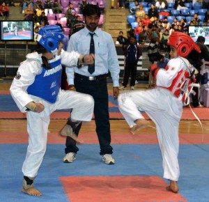 The Wings team competed in the 2013 National Tae Kwon Do Championships. Several girls won medals.
